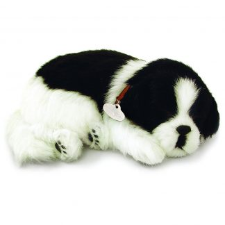 Border Collie Bundle