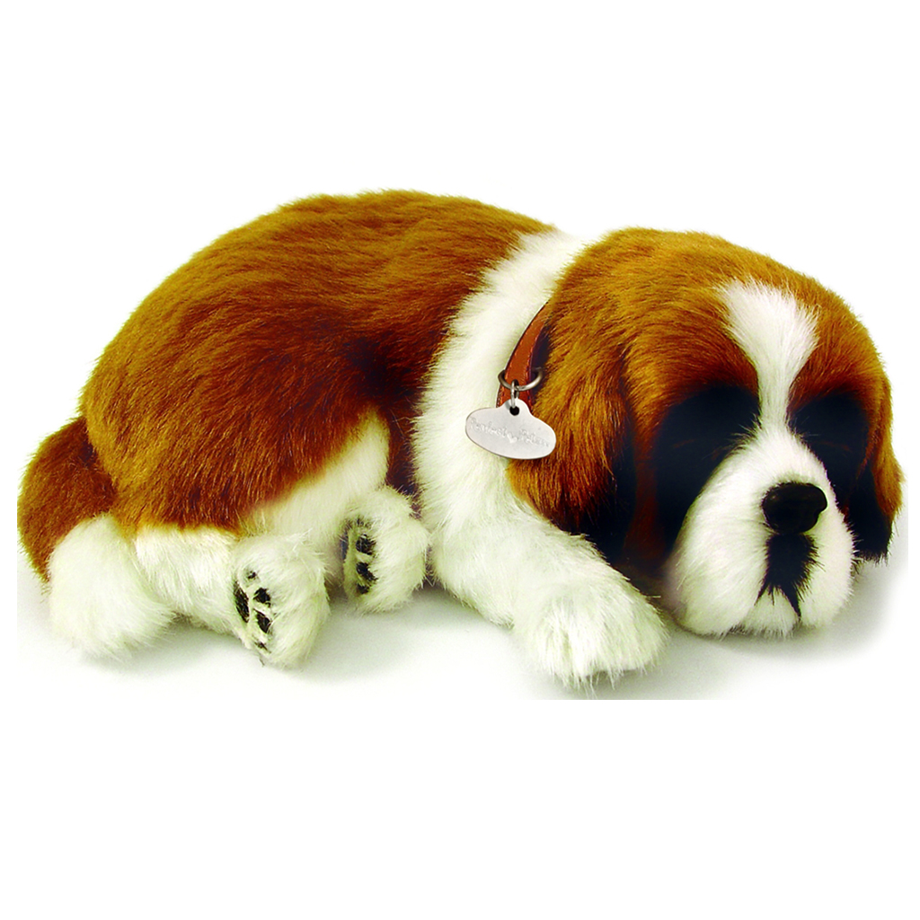 St Bernard Bundle