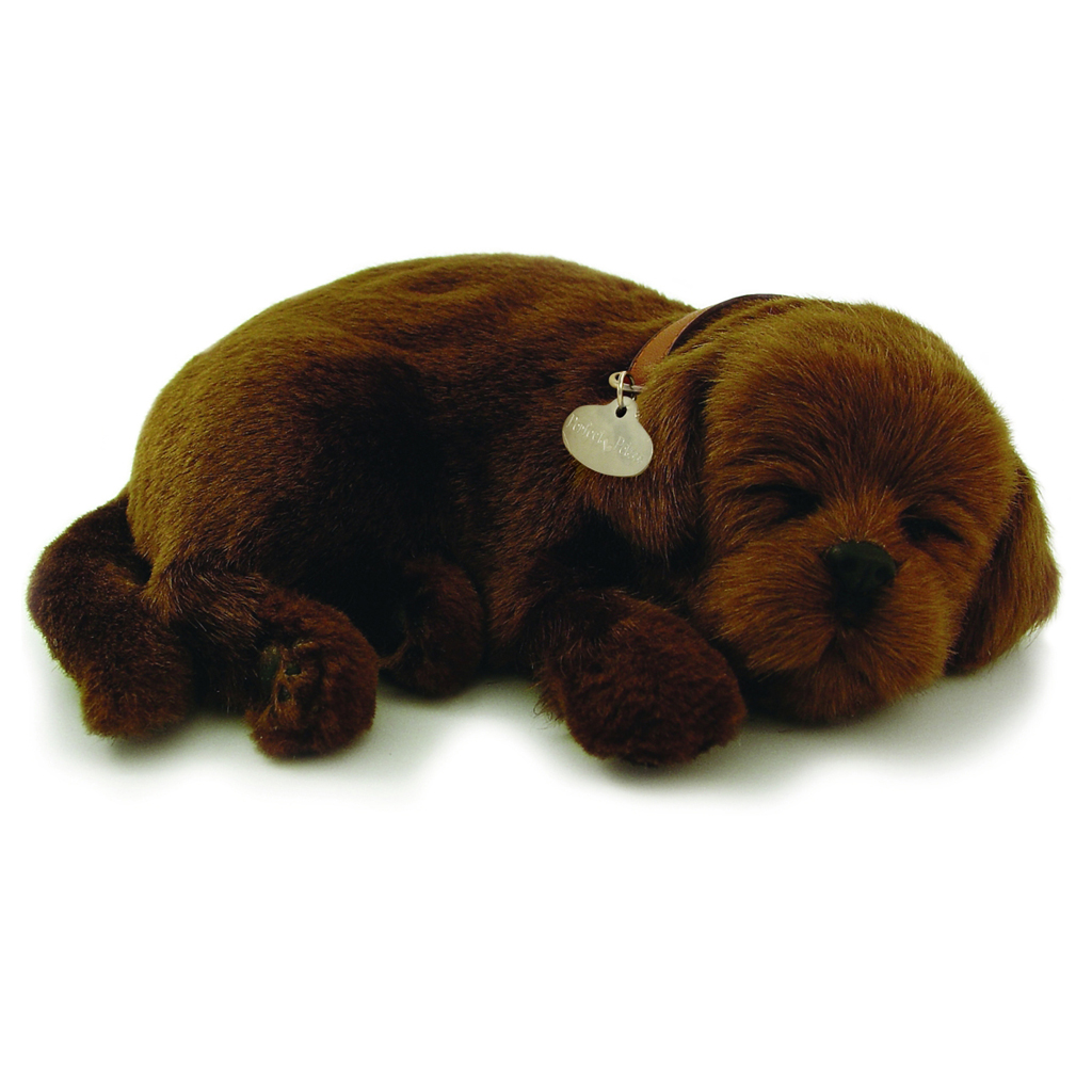 Chocolate Lab bundle