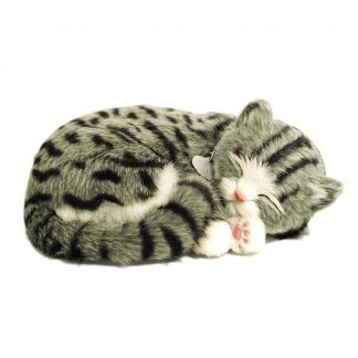 Grey Tabby Bundle