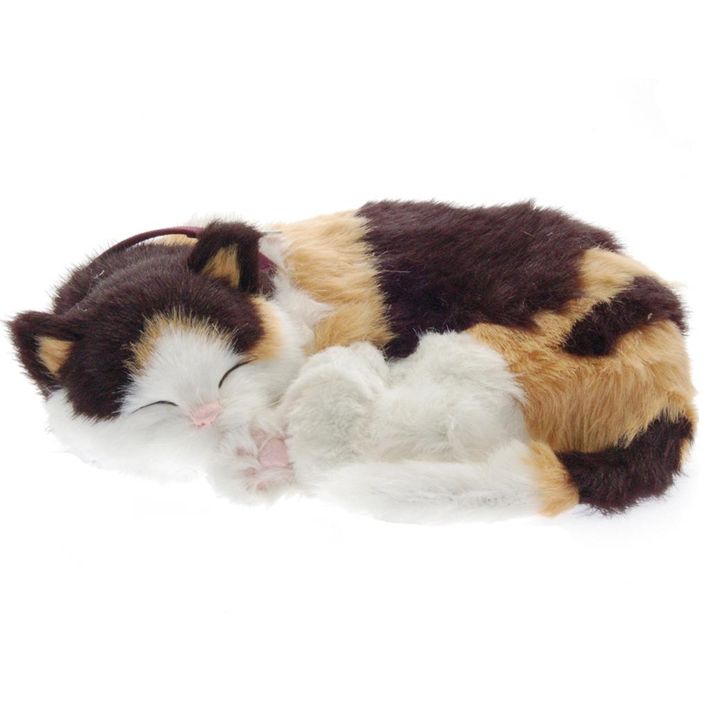 Calico Cat Bundle